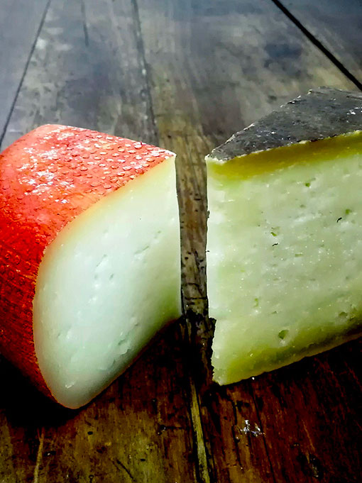 Pecorino, more then another cheese